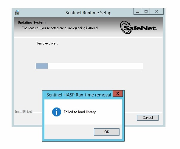 Sentinel Runtime Setup Problem - Gemalto Sentinel Customer